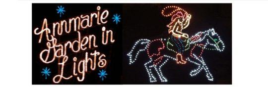 2013-12-22-garden-in-lights
